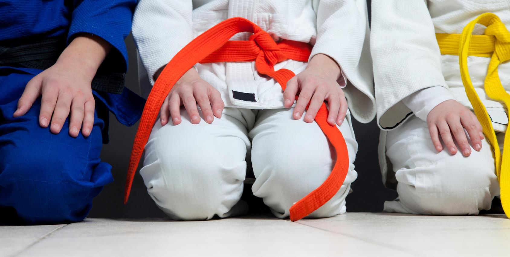 Judo-Kids Sehr Aktiv