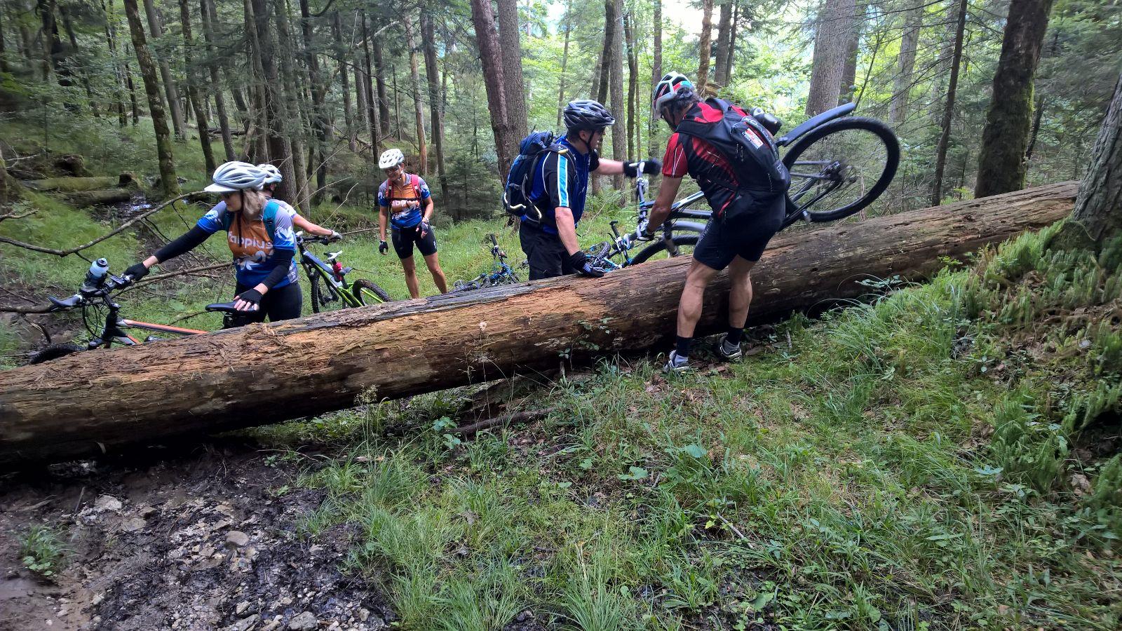 Neue Mountainbike-Touren Gesucht